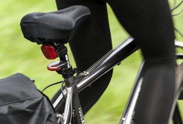 coprisella bici