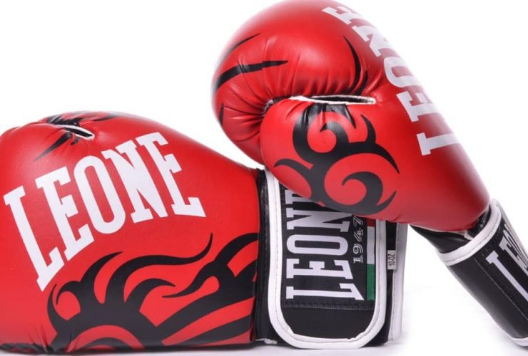 guantoni boxe
